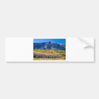 Colorado Autumn Air Car Bumper Sticker