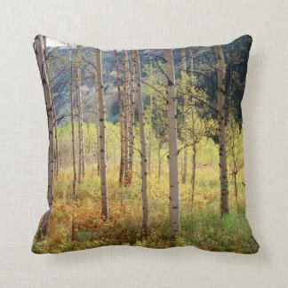 Colorado, Autumn colors of aspen trees Cushion