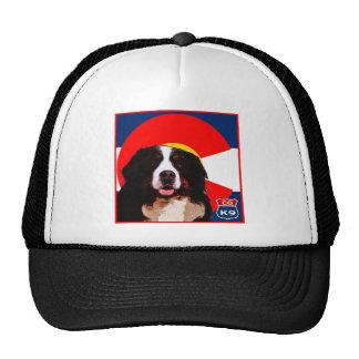 Colorado Bernese Mountain Dog Cap