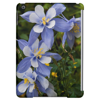 Colorado Blue Columbine near Telluride Colorado Cover For iPad Air