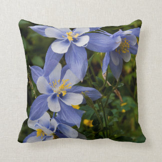Colorado Blue Columbine near Telluride Colorado Cushion