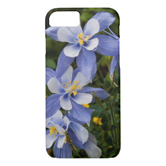 Colorado Blue Columbine near Telluride Colorado iPhone 8/7 Case