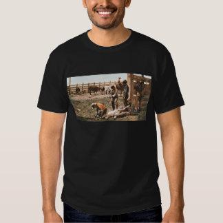 Colorado Branding 1904 Vintage Cowboy T Shirts