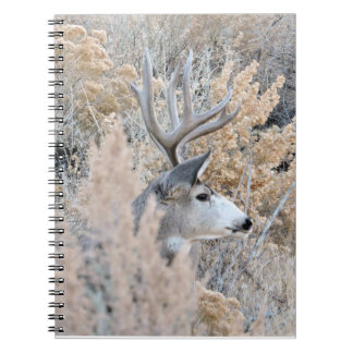 Colorado Buck Notebook