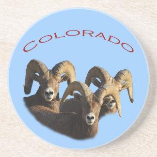 Colorado Coaster