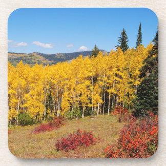 Colorado fall colour coaster