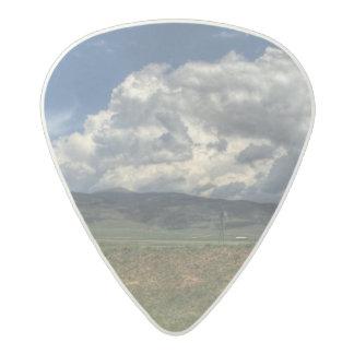 Colorado Farm Acetal Guitar Pick