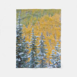 Colorado, Grand Mesa. Early snowfall on forest Fleece Blanket