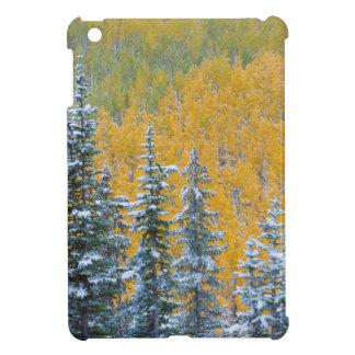 Colorado, Grand Mesa. Early snowfall on forest iPad Mini Cases