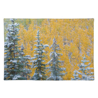 Colorado, Grand Mesa. Early snowfall on forest Placemat