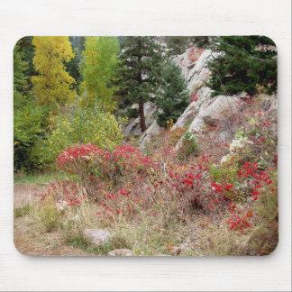 Colorado Landscape Works Mouse Mat