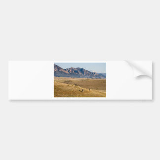 Colorado Mountain Biking Fun Bumper Sticker