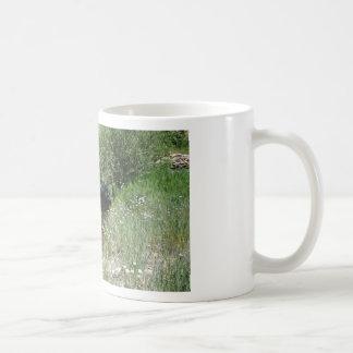 Colorado Mountain Stream Coffee Mug