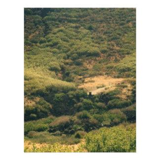 colorado mountains custom flyer