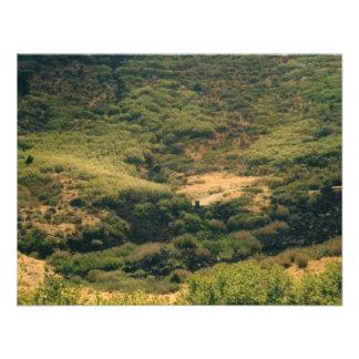 colorado mountains personalized invitation