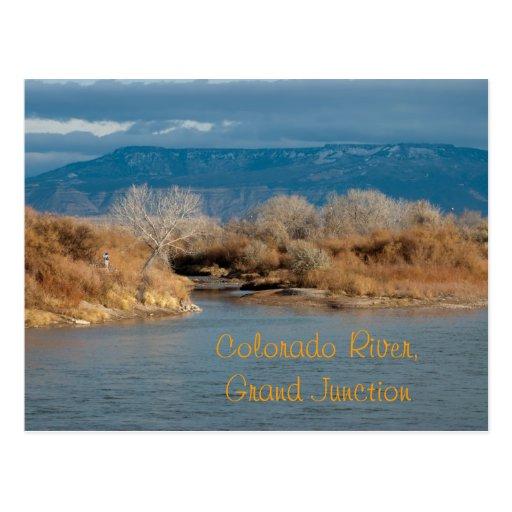 Colorado River,Grand Junction Postcard