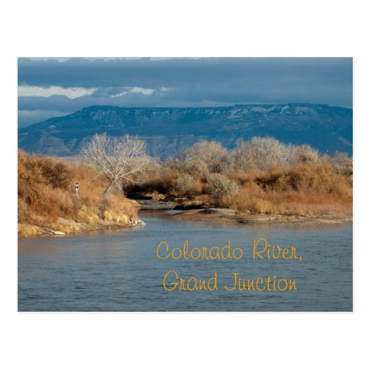 Colorado River,Grand Junction Postcard