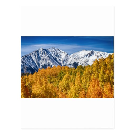 Colorado Rocky Mountain Autumn Magic Post Card