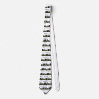 Colorado Rocky Mountains Tie