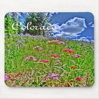 Colorado spring mousepad