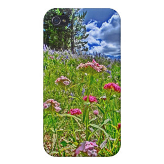 Colorado spring scenery iphone case iPhone 4 cases