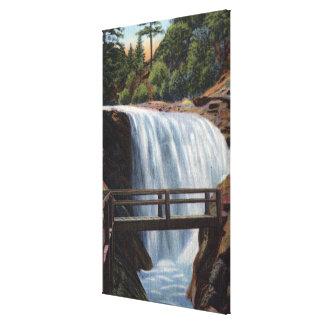 Colorado Springs, CO - Ramona, First of 7 Canvas Print
