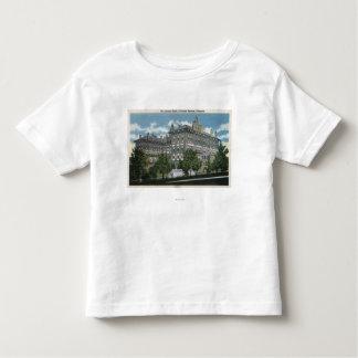 Colorado Springs, Colorado 2 Toddler T-Shirt