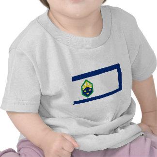 Colorado Springs, Colorado, United States flag T-shirt