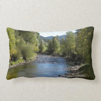 Colorado Stream photo - Estes Park Throw Pillow
