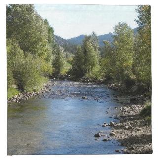 Colorado Stream photo - Estes Park Napkins