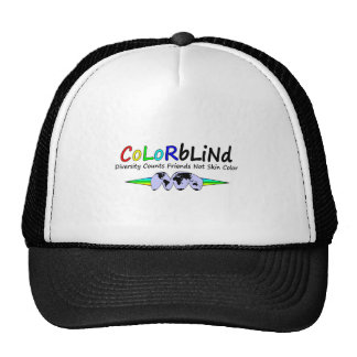 Colorblind Diversity Counts Friends Not Skin Color Hats