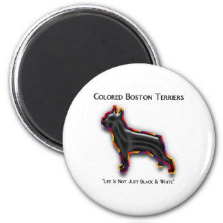 Colored Boston Terrier Magnet