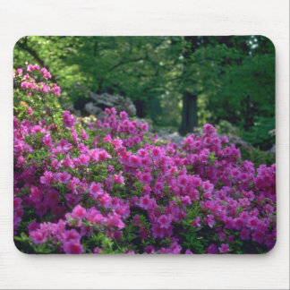 Colored Bushes Mouse Pad