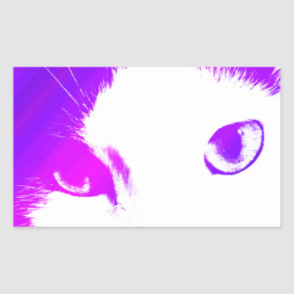 Colored Cat Eyes Sticker