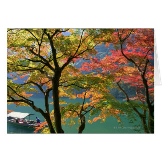 Colored Leaves Greeting Card