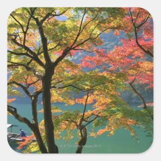 Colored Leaves Square Sticker