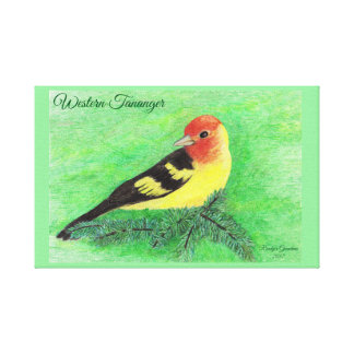 Colored Pencil Drawing of Western Tananger Bird Canvas Print
