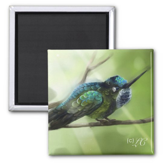Colorfly Square Magnet
