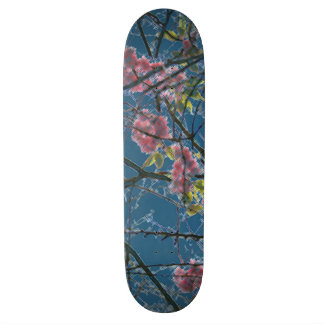 Colorful Abstract Art Print 20 Cm Skateboard Deck