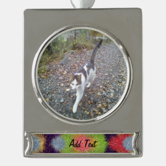 Colorful abstract furry brush pattern silver plated banner ornament