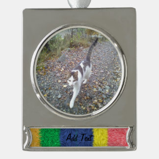 Colorful abstract furry pattern silver plated banner ornament