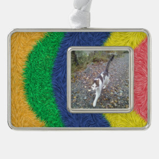 Colorful abstract furry pattern silver plated framed ornament