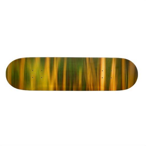 Colorful Art and Design Skate Board Deck