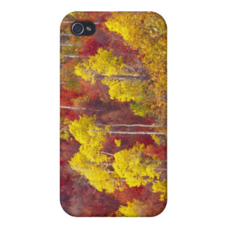Colorful aspens in Logan Canyon Utah in the 2 Cover For iPhone 4