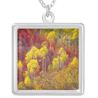 Colorful aspens in Logan Canyon Utah in the 2 Silver Plated Necklace