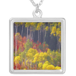 Colorful aspens in Logan Canyon Utah in the Silver Plated Necklace