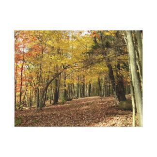 Colorful Autumn Foliage Canfield Ohio Canvas Print