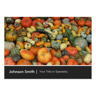 Colorful Autumn Harvest Gourd Pumpkins Corn Pack Of Chubby Business Cards