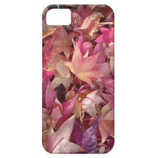 Colorful autumn leafs iPhone 5 covers