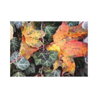 Colorful Autumn Leaves Canvas Print